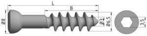 Wkręt do kości gąbczastej Ø6,5/3,0mm B=22-32mm